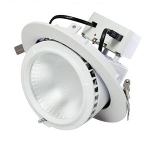Circular Gimbal Downlight